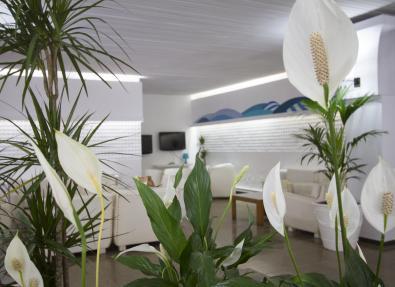 Réception de l'Hôtel Villa Garbí Costa Brava